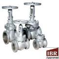 Cast Steel IBR Valves