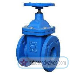 """125mm or 5"""" NB LEADER GATE VALVE CAST IRON BODY F/E-FLANGED END TO CLASS 125 CARBON STEEL TRIMS NRS"""